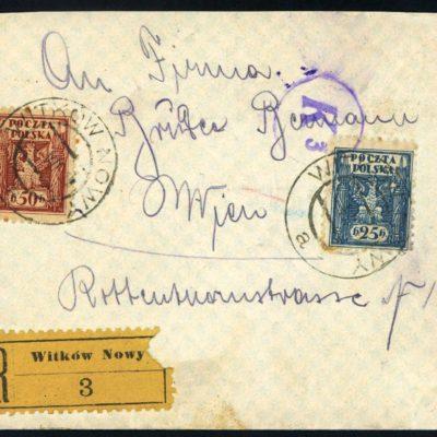 Новий Витків. 1919